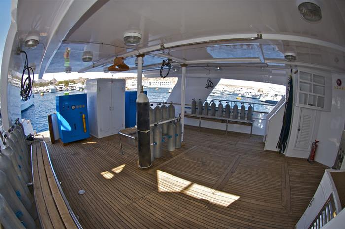 Dive Deck - Red Sea Blue Force 2